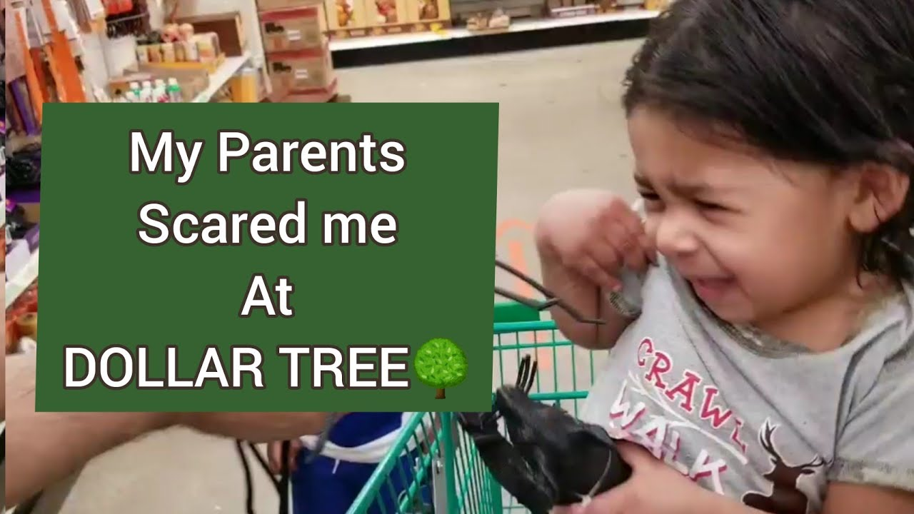 My parents Scared me at Dollar Tree TryNotToLaughChallenge Funny Video